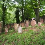 Jüdischer Friedhof Reistenhausen, Foto: Carl-Robert Kümpers